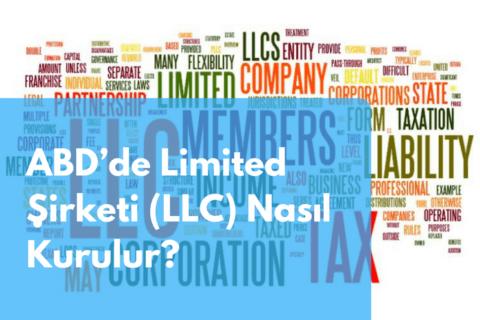 ABD'de Limited Şirketi (LLC) Nasıl Kurulur?