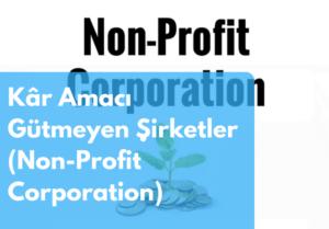 """Kâr Amacı Gütmeyen Şirketler (""""Non-Profit Corporation"""") Nedir?"""