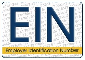 İşveren Kimlik Numarası (EIN) Onay Mektubu